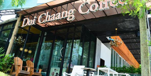 งานพิเศษร้านกาแฟ DOI CHAANG Caffe ( Part Time-Full Time )