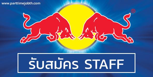 สมัครงาน STAFF กระทิงแดง เป็นงาน Roadshow วันละ 700 บาท
