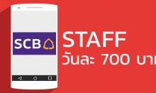 สมัครงาน Staff App scb