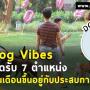 Dog Vibes เปิดรับสมัครพนักงานหลายตำแหน่งงาน (รายได้ดี)